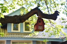 A bird house hung perfectly in a large tree.