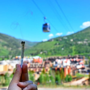 Native Roots pre-roll at Vail Gondola
