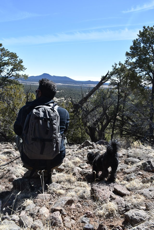 Alpaca Ranch hike